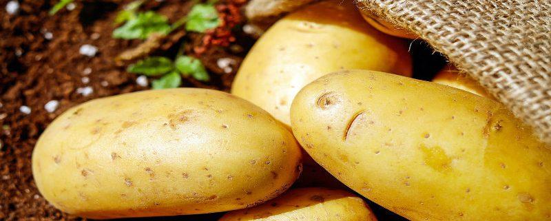 patatas donde comer sevilla